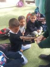 Children enjoying Zoo field trips
