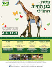List of Spring educational activities at the zoo