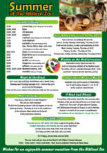 Summer Visitor Educational Activities