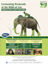 Weekend Educational Activities at the Zoo