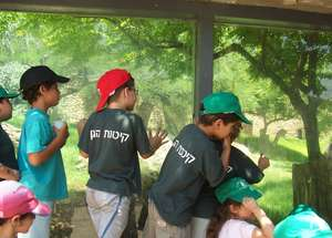 Summer Camp at the Zoo