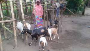Jenny Caring for Her Goats at Home