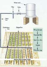 Diagram of Drip Irrigation System