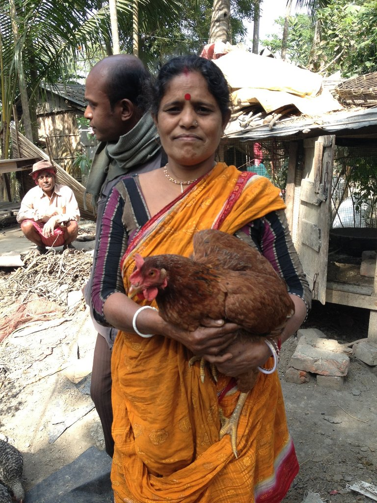 Empowering India's Rural Poor through Poultry