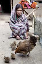 Transforming lives through poultry