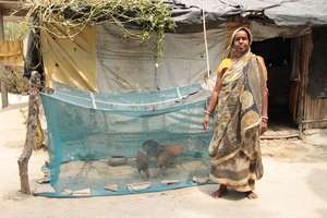 Woman poultry farmer in West Bengal