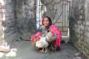 Lady farmer proudly holds her cockrel