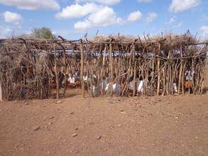 Nomadic Children in existing school