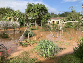 Early monsoon flooding in the veggie gardens