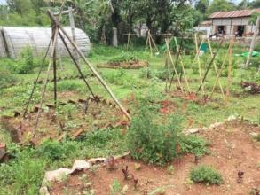 Garden space is growing!