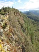 Jaguar Mountain, Oaxaca, Mexico