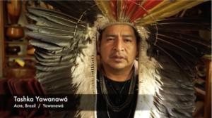 Jaguar Elder, Tashka Yawanawa