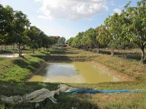 Cambodian Village Fisheries