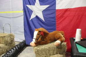 IA's Totally Texan 25th Anniversary Blast!