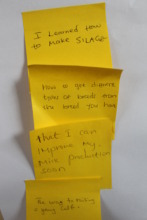 Written feedback from trainees