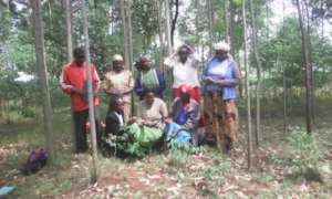 Women acces loans in groups as collateral