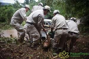 PeaceTrees Vietnam has removed 85,000 UXOs