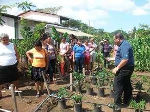 Demonstration Plot: Gardening with Drip Irrigation