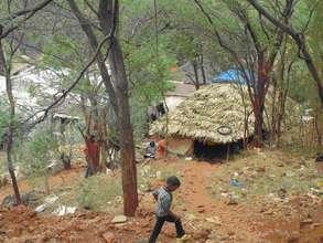 Tribal Colony