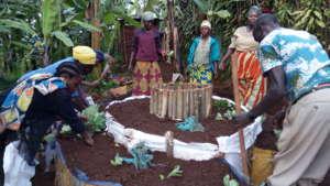 Creating a nutritious kitchen garden