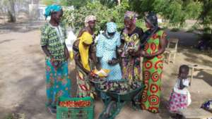 Women in Walo happy with their harvest