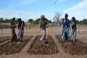 Preparing the field for planting vegetables