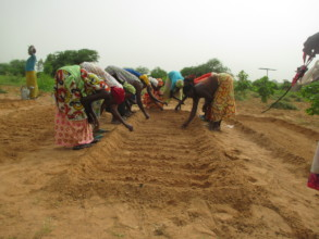 Women in Santhie planting seeds