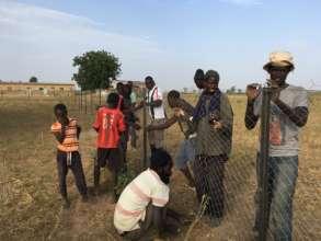 Fencing the new Back Samba Dior garden site