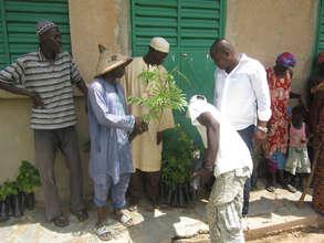 Community members planted several tree varieties