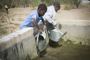 School boys in Darou Diadji help water the garden.