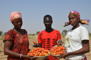 Food to feed the family during the pandemic
