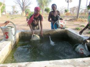 Cooperative members gather water from a cistern