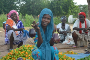Bountiful harvest in the community of Yougoure