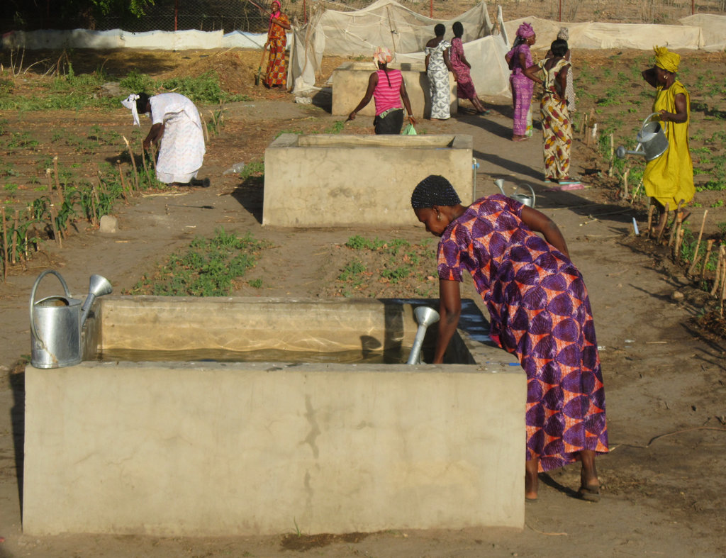 Clean Water for 1,500 People in Rural Senegal