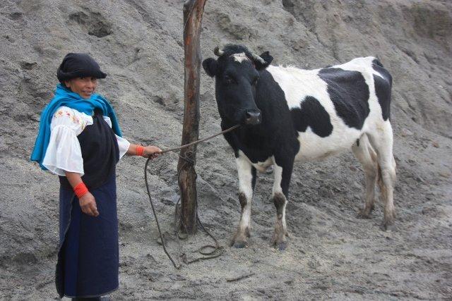 Education & nutrition for 100 children in Ecuador