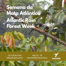Atlantic Forest Week