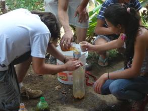 Making the organic fertilizer