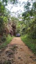 The road to rainforest adventure
