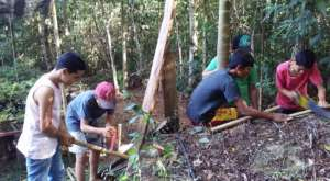 studying soils in the forest