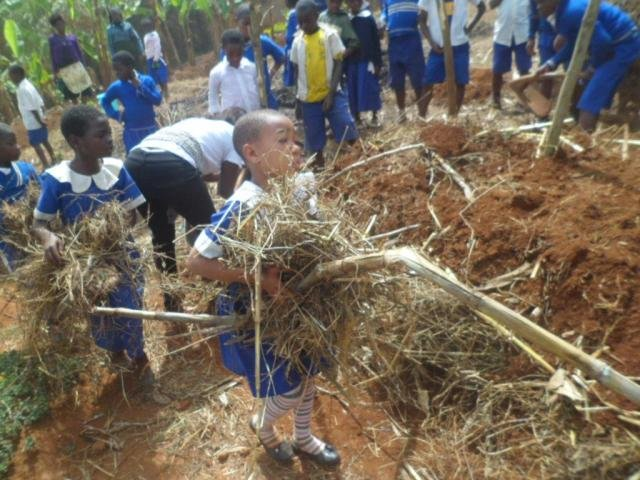 Grow hope for 150 Cameroon schoolkids
