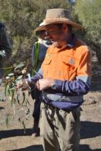 Richard discussing cockatoo habitat