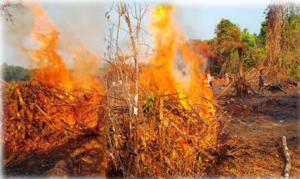 BRV burning