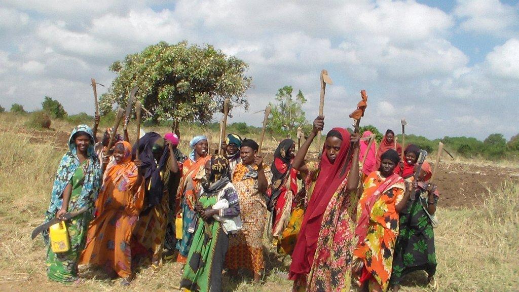 Emergency response for 200 Women Farmers, Somalia