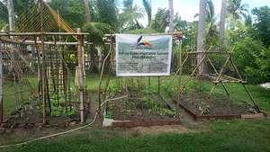 Bahay Kubo Vegetable Garden October 26, 2014