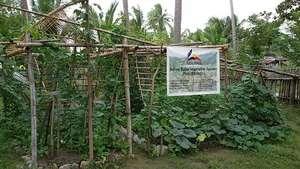 Bahay Kubo Vegetable Garden November 30, 2014
