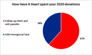 How Have A Heart spent AKI funds in 2020