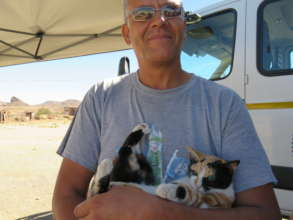 Another kitty spayed at the HAH-Mobile Clinic