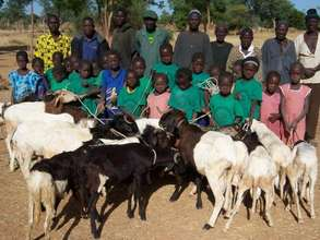 Primary school girls with parents and lambs in Kol