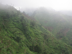 Shrouded in mist,this area used to be dense forest