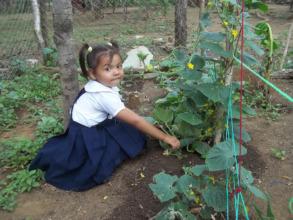 School Gardener